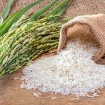 Rice/Chawal