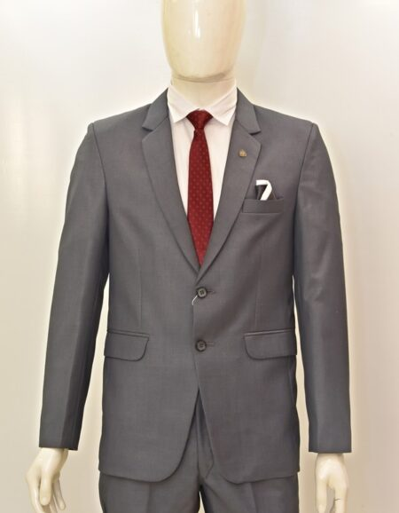 Men Grey Formal Suit